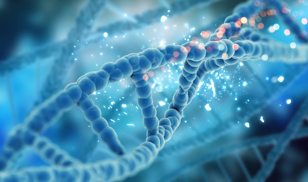 stockage-ADN
