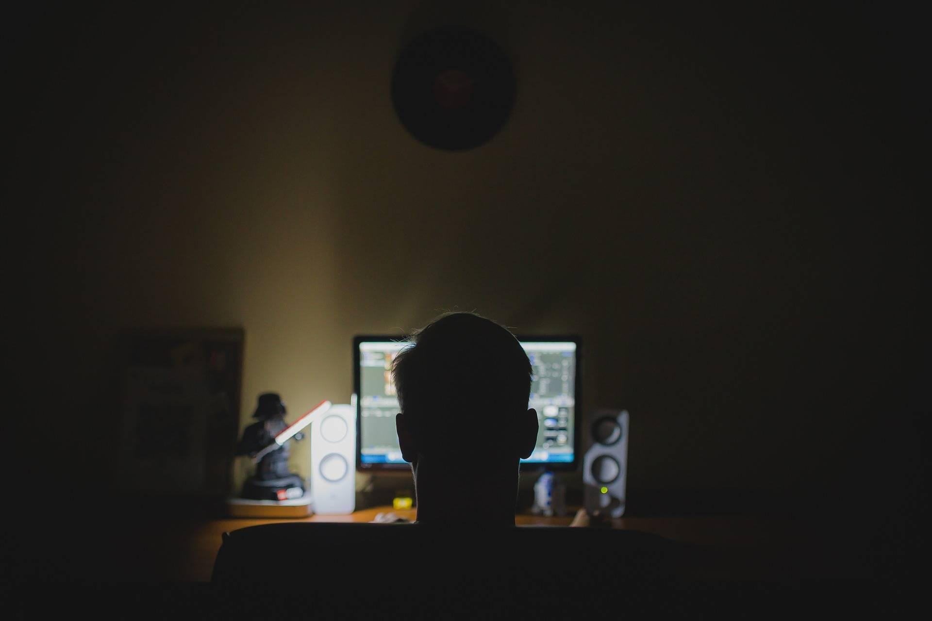 Les cyberattaques visent les banques, les réseaux sociaux, les sites de rencontres. (Pixabay / Tookapic)