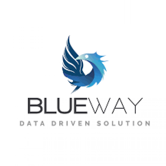 logo-blueway