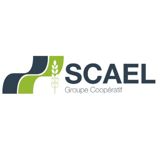 scael-logo