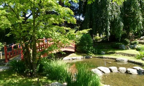 un pont rouge dans un jardin japonais contemporain