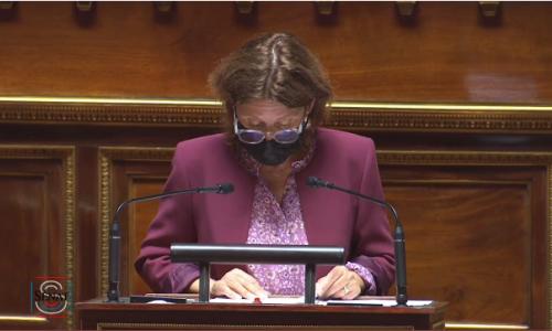 Le Sénat adopte à l'unanimité la proposition de loi sur les bibliothèques
